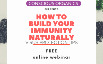 How To Build Your Immunity Naturally + Virus Defense Tips (Free Online Webinar)